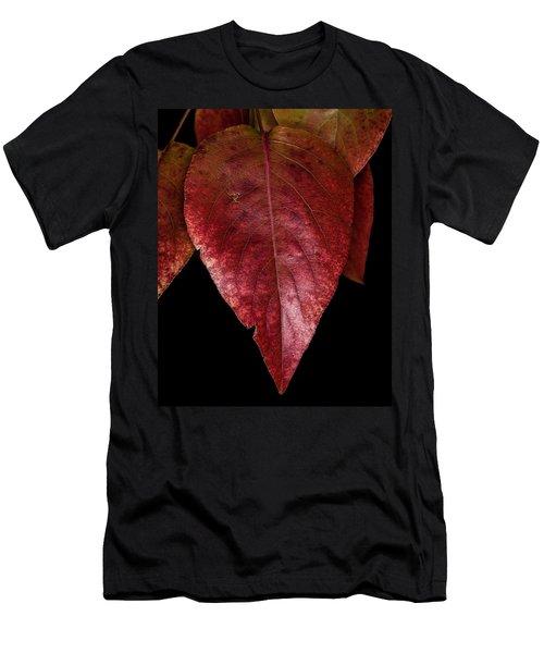 Fall Colors 3 Men's T-Shirt (Athletic Fit)