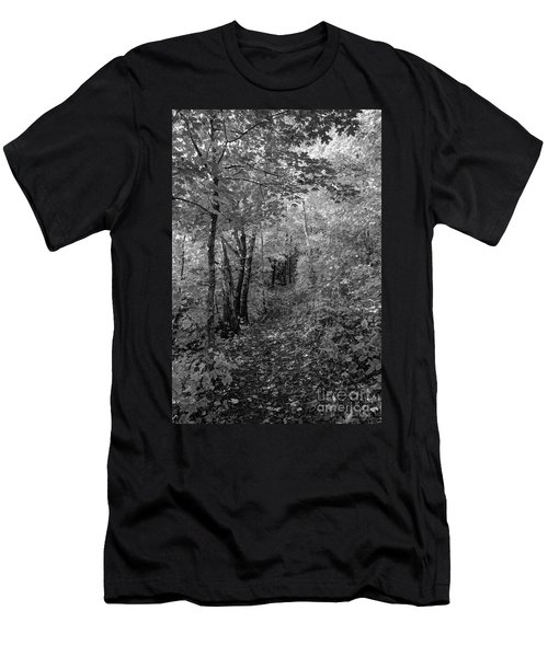 Fall Colors In Bw Oberg Mountain North Shore Minnesota Men's T-Shirt (Athletic Fit)