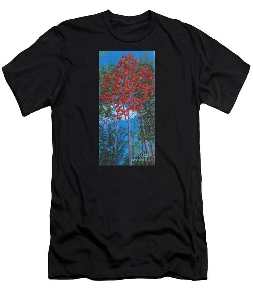 Fall In Asheville Men's T-Shirt (Athletic Fit)