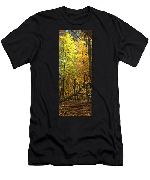 Fall Maples- Uw Arboretum  - Madison - Wisconsin Men's T-Shirt (Athletic Fit)