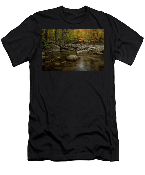 Fall On The Gale River Men's T-Shirt (Athletic Fit)