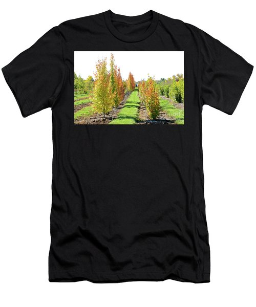 Fall On The Tree Farm Men's T-Shirt (Athletic Fit)