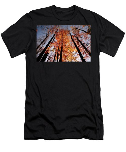 Fall Trees Sky Men's T-Shirt (Slim Fit) by Meta Gatschenberger
