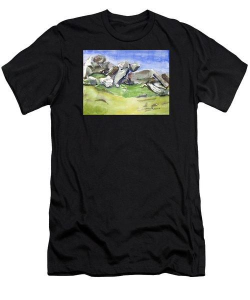 Fallen Stones Men's T-Shirt (Athletic Fit)