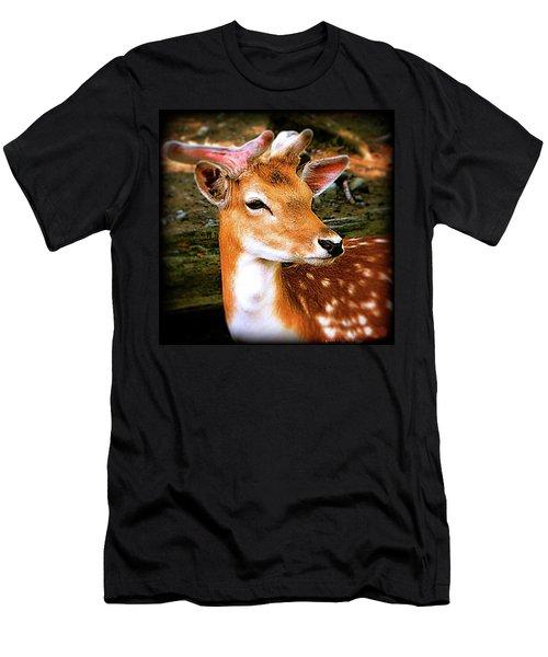 Fallow Deer Portrait Men's T-Shirt (Athletic Fit)
