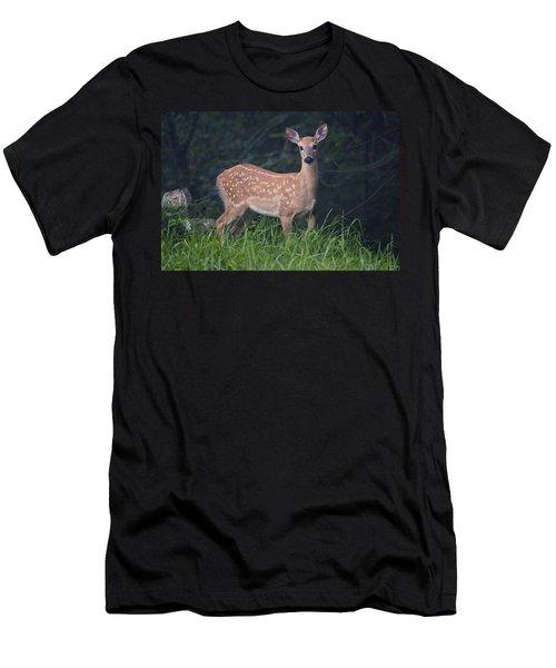 Fawn Doe Men's T-Shirt (Athletic Fit)