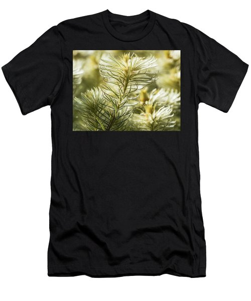 Featherheads Men's T-Shirt (Athletic Fit)