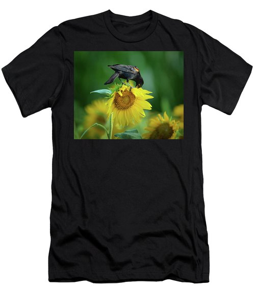 Sunflower Feast - Red-winged Blackbird Men's T-Shirt (Athletic Fit)