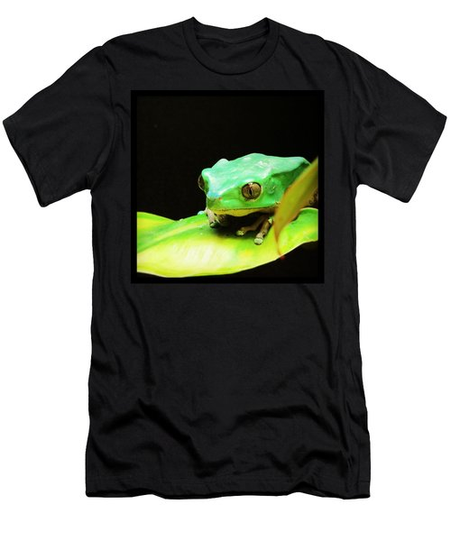 Feeling Froggy Men's T-Shirt (Athletic Fit)