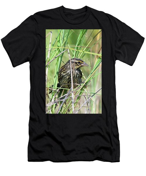 Female Red Winged Blackbird 5830 Men's T-Shirt (Athletic Fit)