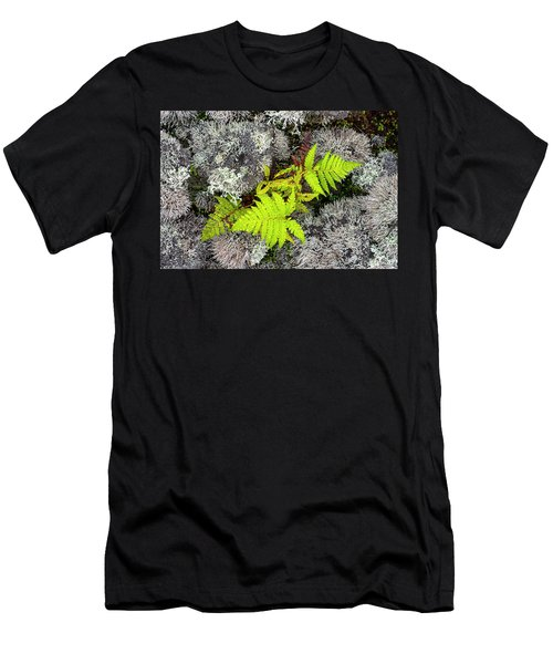 Fern And Lichen Men's T-Shirt (Athletic Fit)