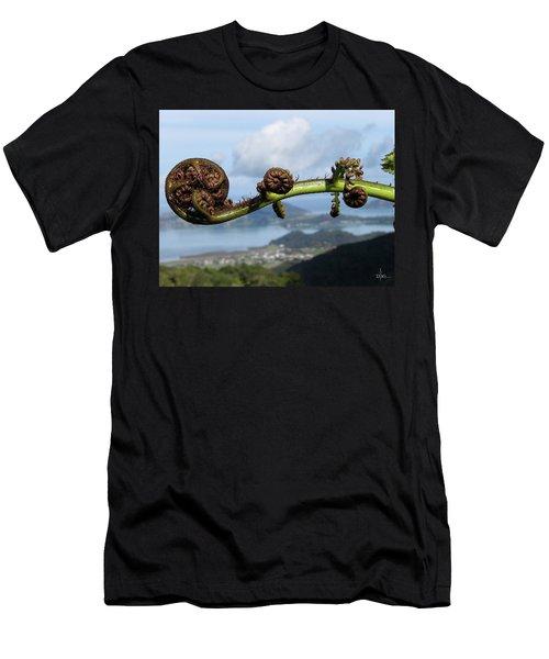 Fern Fiddlehead Men's T-Shirt (Athletic Fit)