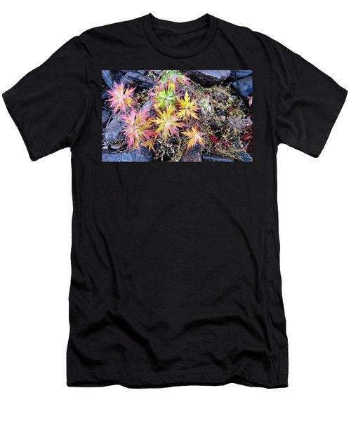 Ferns Men's T-Shirt (Athletic Fit)