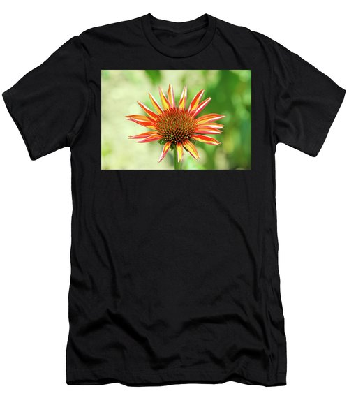 Men's T-Shirt (Athletic Fit) featuring the photograph Fibonacci by David Chandler