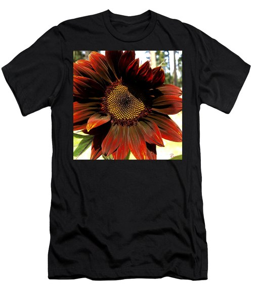 Fibonacci Hues Men's T-Shirt (Athletic Fit)