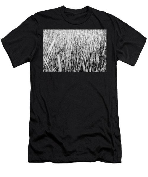 Field Grasses Men's T-Shirt (Athletic Fit)