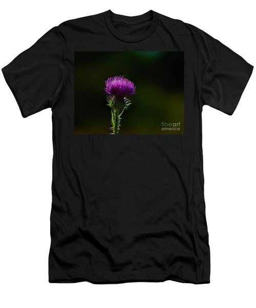 Field Thistle Men's T-Shirt (Athletic Fit)