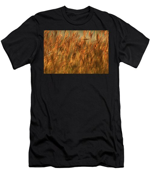Fields Of Golden Grains Men's T-Shirt (Athletic Fit)