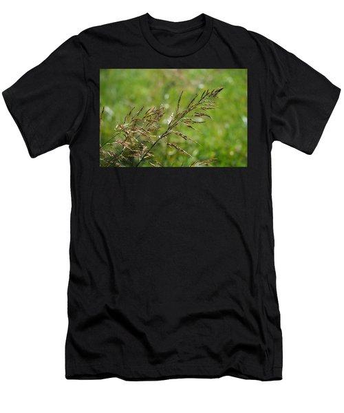 Fields Of Grain Men's T-Shirt (Athletic Fit)