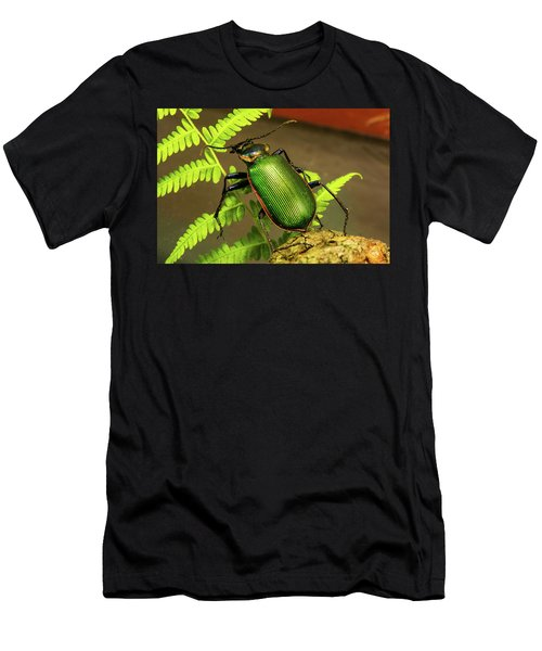 Fiery Hunter Carabid Men's T-Shirt (Athletic Fit)
