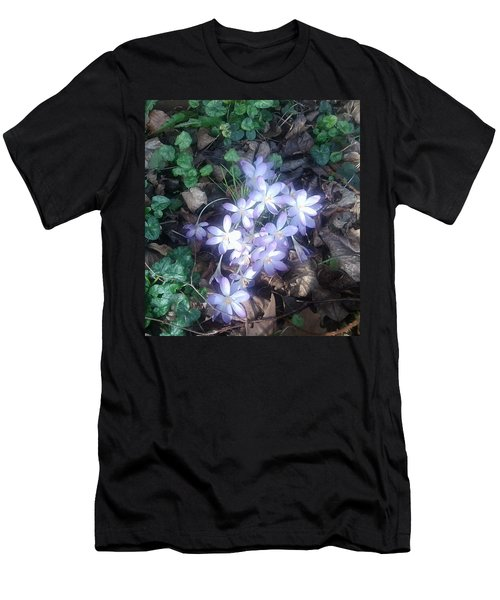 First Spring Treasures 2017 Men's T-Shirt (Athletic Fit)