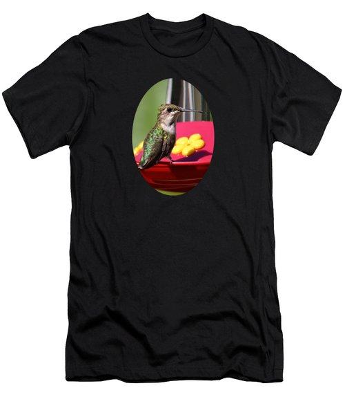 Fisheye Hummingbird Men's T-Shirt (Athletic Fit)