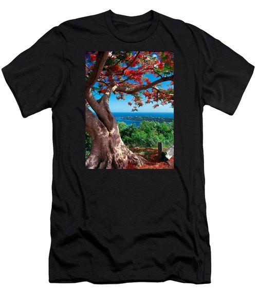 Flame Tree St Thomas Men's T-Shirt (Athletic Fit)