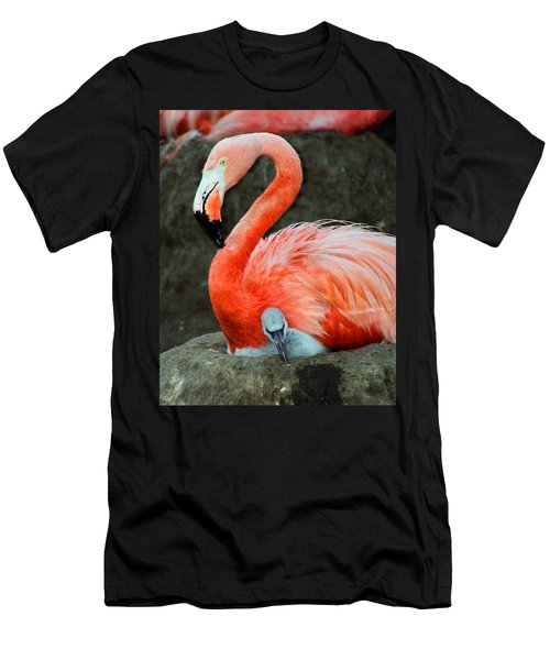 Flamingo And Baby Men's T-Shirt (Athletic Fit)
