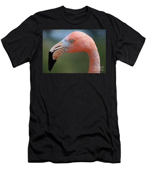 Flamingo Protrait Men's T-Shirt (Athletic Fit)