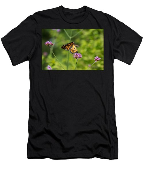 Flight Of The Monarch 1 Men's T-Shirt (Athletic Fit)
