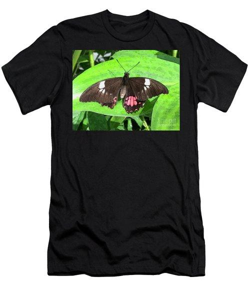 Flower Imprint On Wing Men's T-Shirt (Athletic Fit)