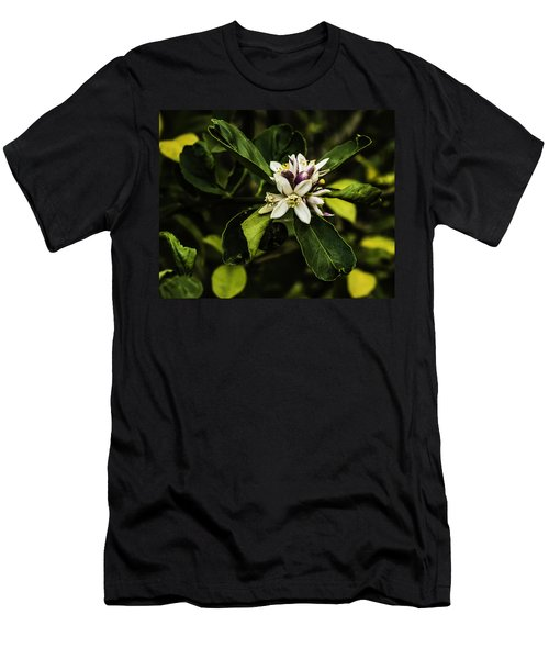 Flower Of The Lemon Tree Men's T-Shirt (Athletic Fit)