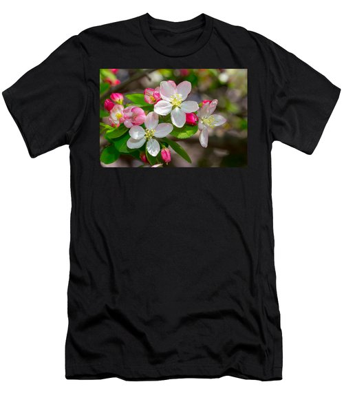 Flowering Cherry Tree Blossoms Men's T-Shirt (Athletic Fit)