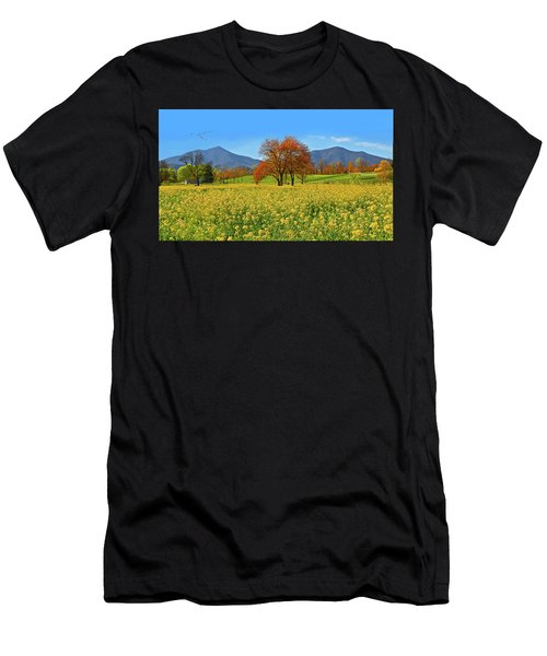 Flowering Meadow, Peaks Of Otter,  Virginia. Men's T-Shirt (Athletic Fit)