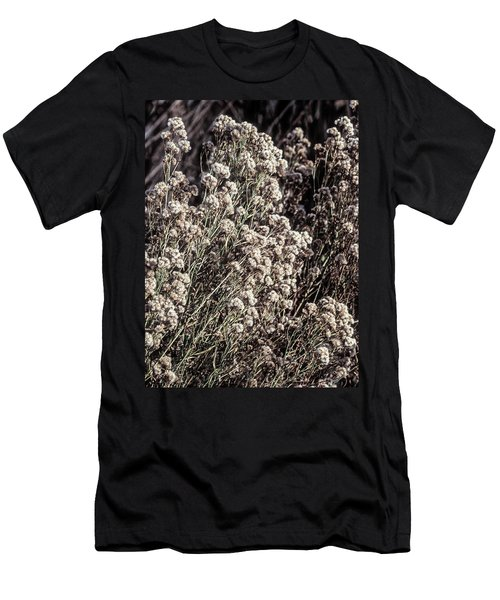 Fluff And Seeds Men's T-Shirt (Athletic Fit)