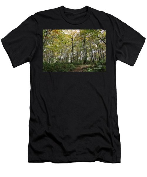 Forest Canopy Men's T-Shirt (Athletic Fit)