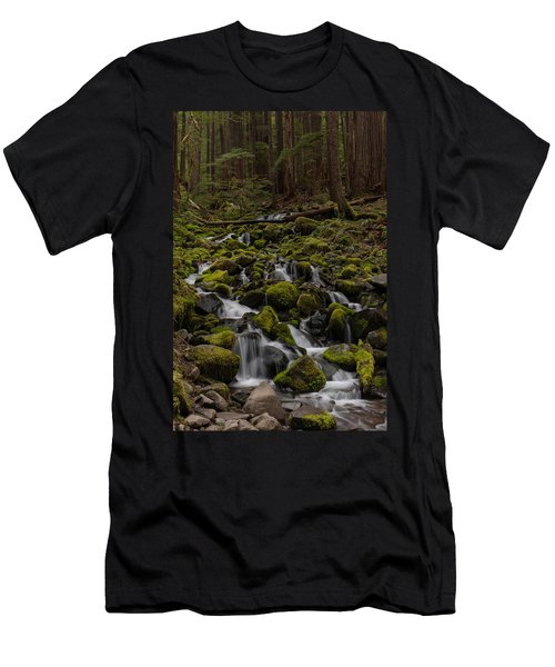 Forest Cathederal Men's T-Shirt (Athletic Fit)
