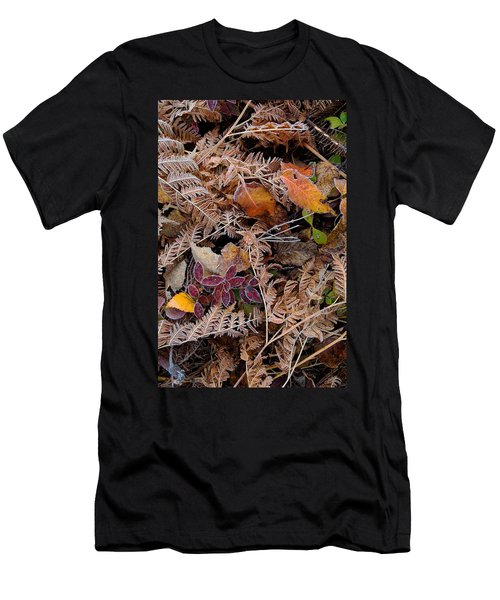 Forest Ferns Men's T-Shirt (Athletic Fit)