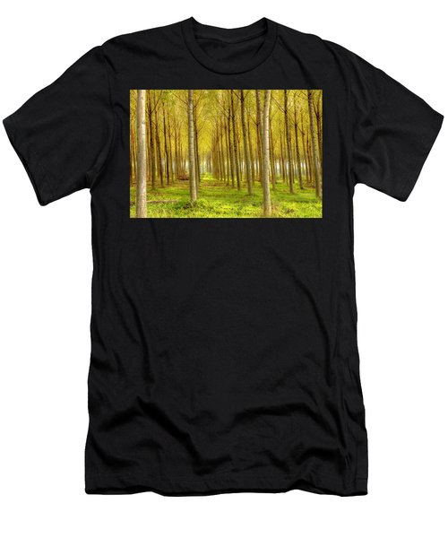 Forest In Autumn Men's T-Shirt (Athletic Fit)