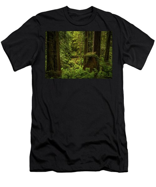 Forest Primeval Men's T-Shirt (Athletic Fit)