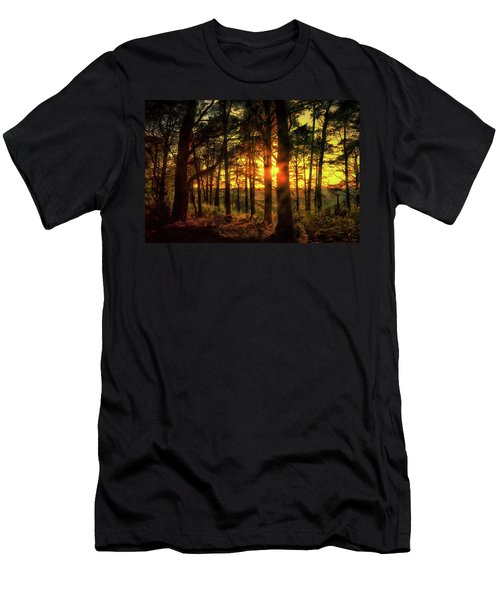 Forest Sunset Men's T-Shirt (Athletic Fit)