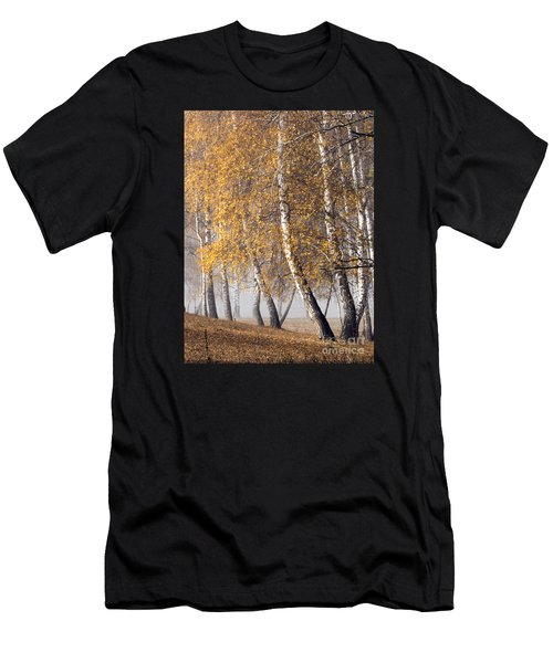 Forest With Birches In The Autumn Men's T-Shirt (Athletic Fit)