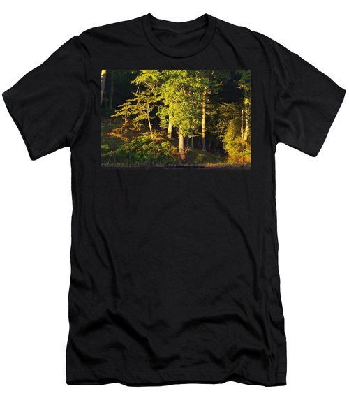 Forests Edge Men's T-Shirt (Athletic Fit)