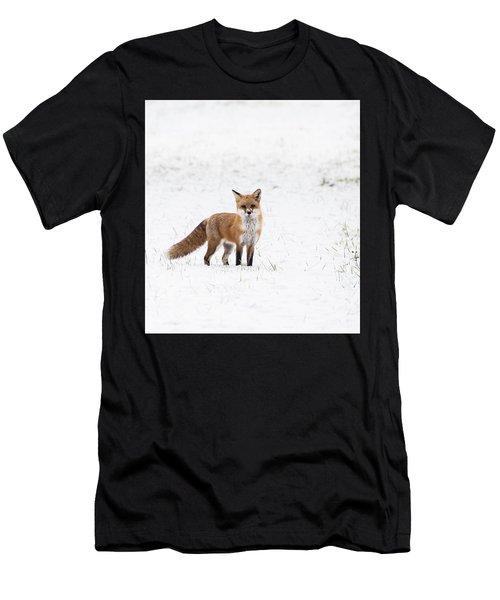 Fox 1 Men's T-Shirt (Athletic Fit)