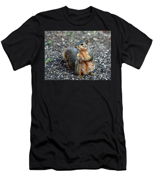 Fox Squirrel Breakfast Men's T-Shirt (Athletic Fit)