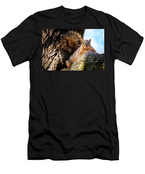 Fox Squirrel Watching Me Men's T-Shirt (Athletic Fit)