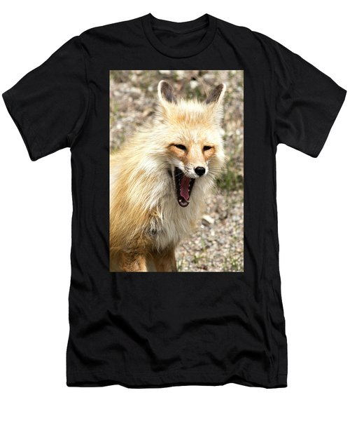 Fox Yawn Men's T-Shirt (Athletic Fit)