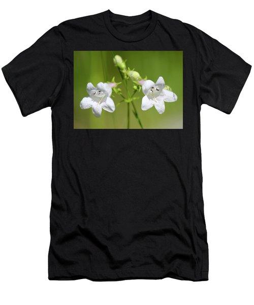 Foxglove Beardtongue Men's T-Shirt (Athletic Fit)