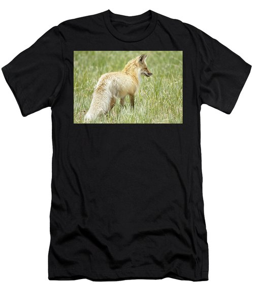 Foxy Lady Men's T-Shirt (Athletic Fit)