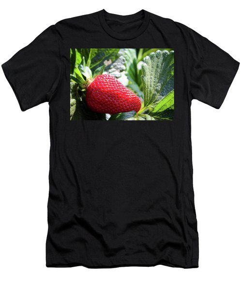 Fraise Men's T-Shirt (Athletic Fit)